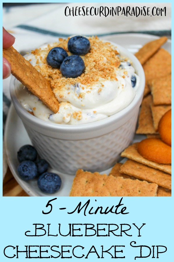 blueberry cheesecake dip with graham crackers